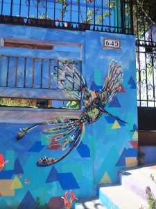 Charquipunk et ses colibris