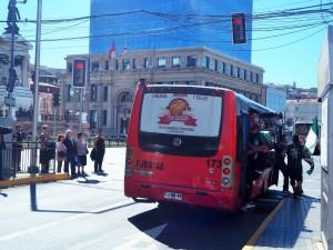 Je crois que ce bus est plein de gens verts
