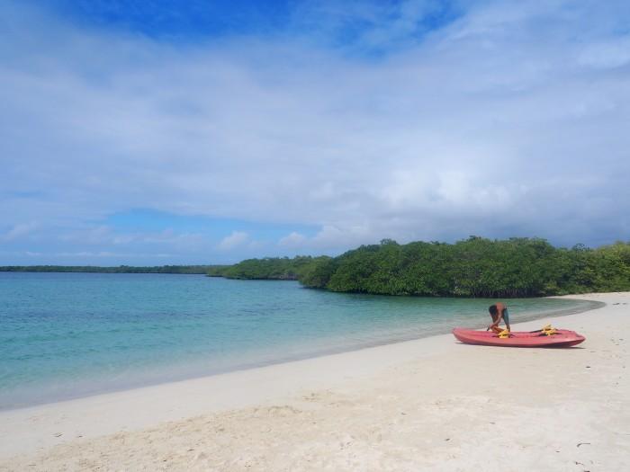 Tortuga Bay - Galapagos