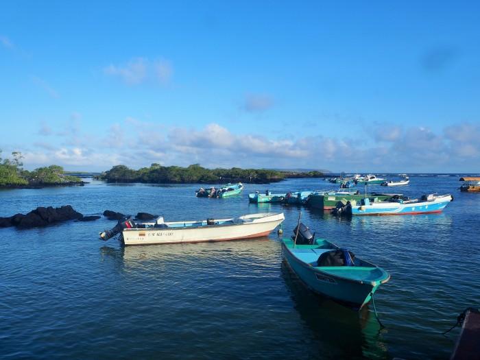 Embarcadère - Puerto Villamil