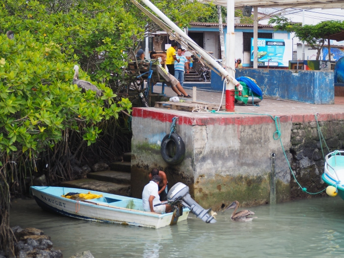 Pêcheur dans le port de Santa Cruz