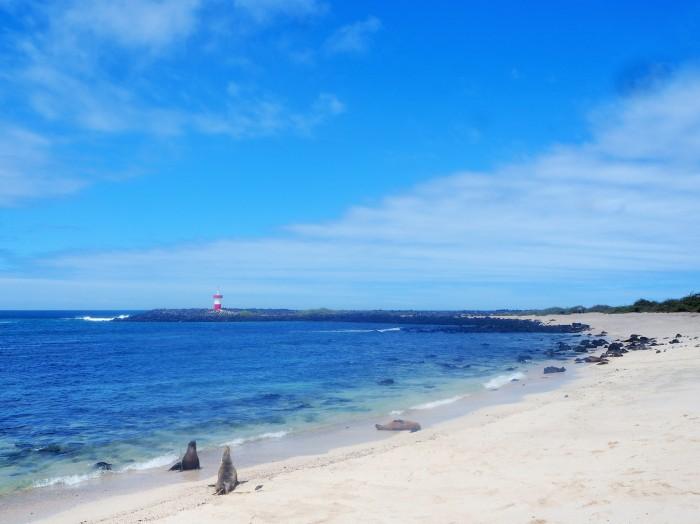 Punta Carola - San Cristobal