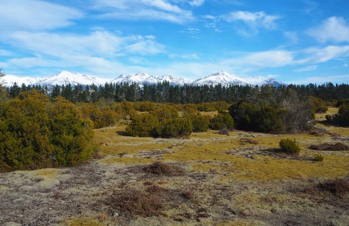 Te Wahipounamu - South West New Zealand World Heritage Area